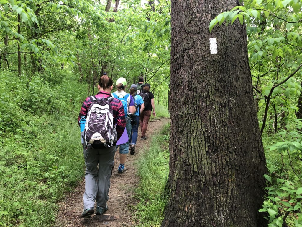 line of hikers on the Appalachian Trail